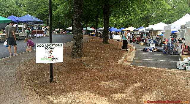 roswell-farmers-market-dog-adoptions